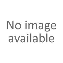 Cinghie - Cinghia 4PJE 1236 481235818206 461975021821 Whirlpool Originale Nuovo
